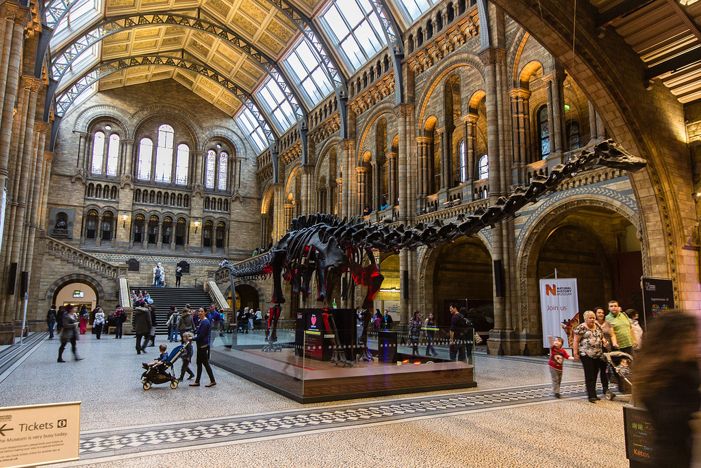 Natural_History_Museum_London United Kingdom inside