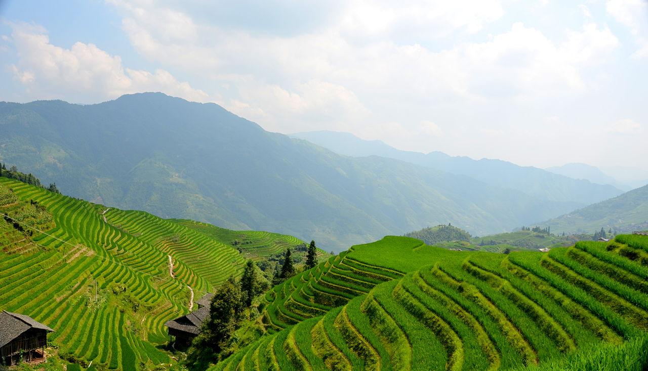 Longji Terraces, Dragon's Backbone rice terrace china