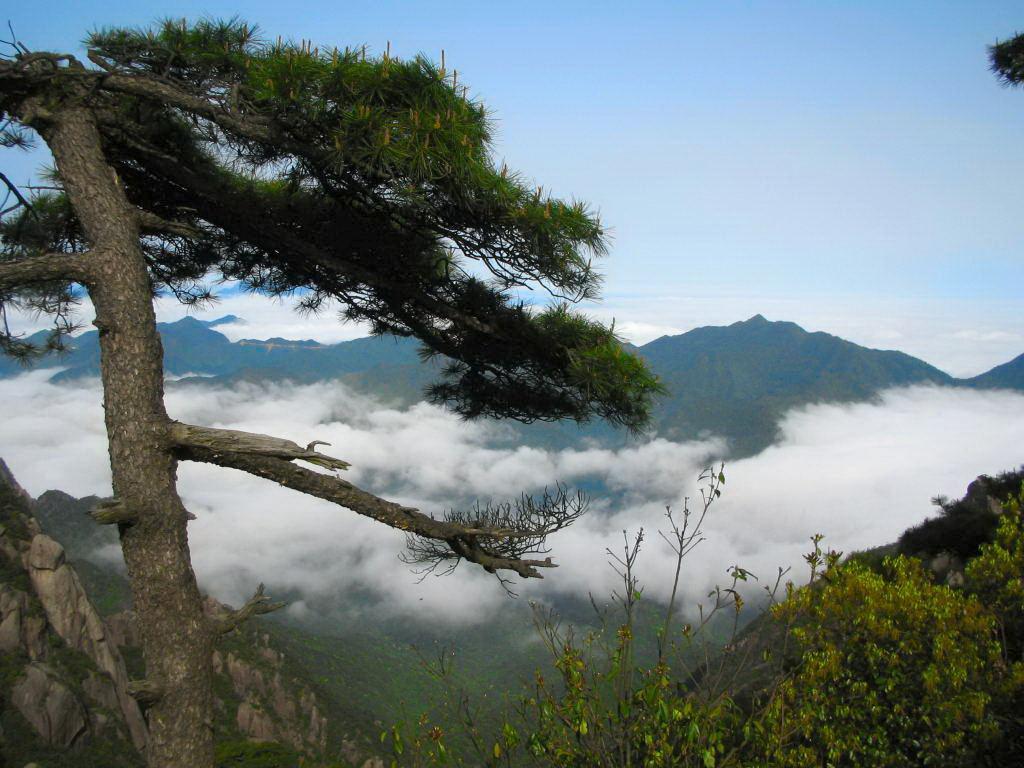SanQingShan china mountain