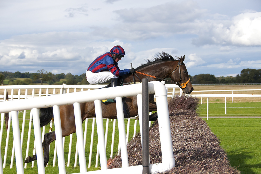 visit uk racecourse travel tips