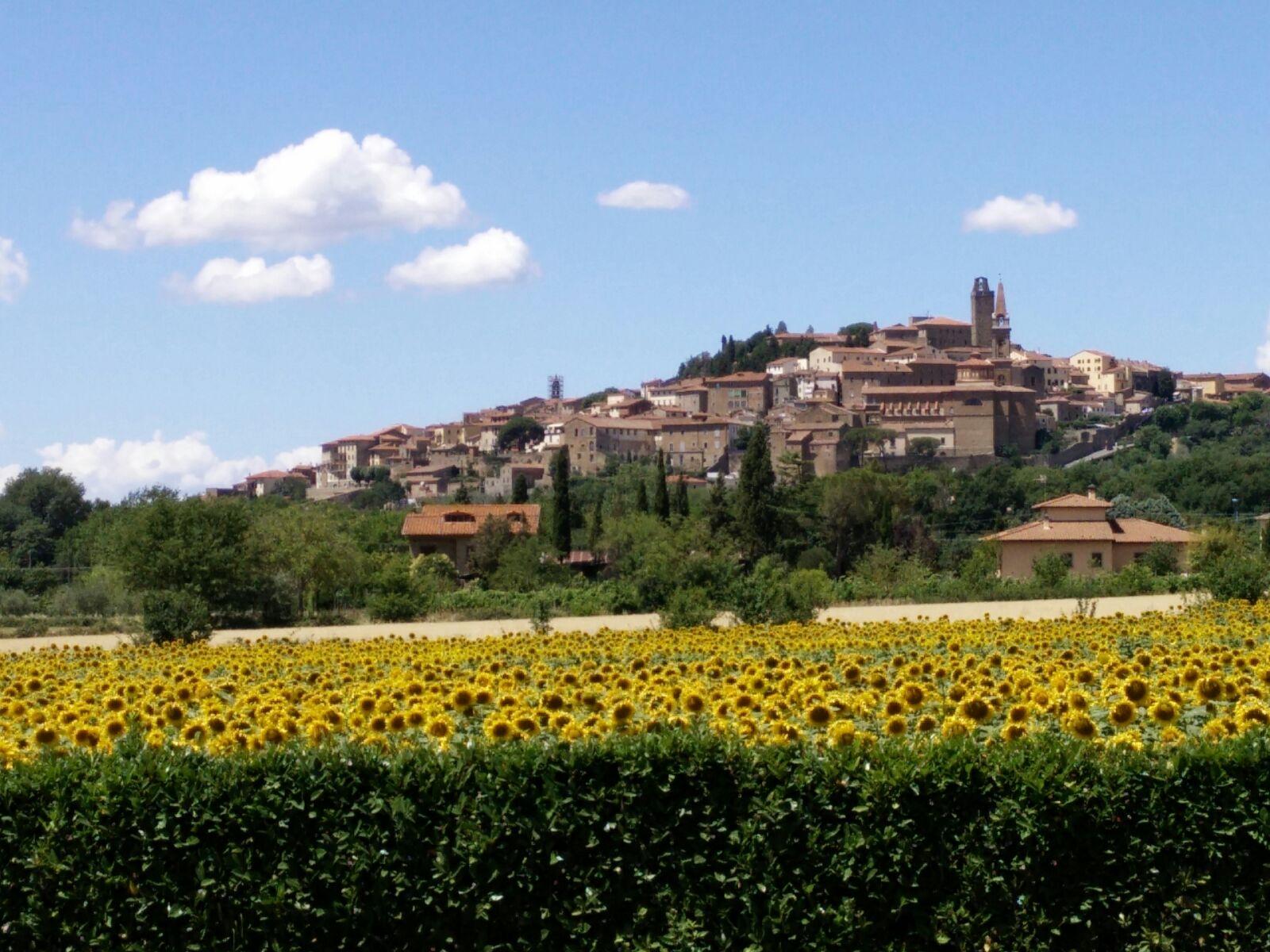 Castiglion Fiorentino Tuscany Italia
