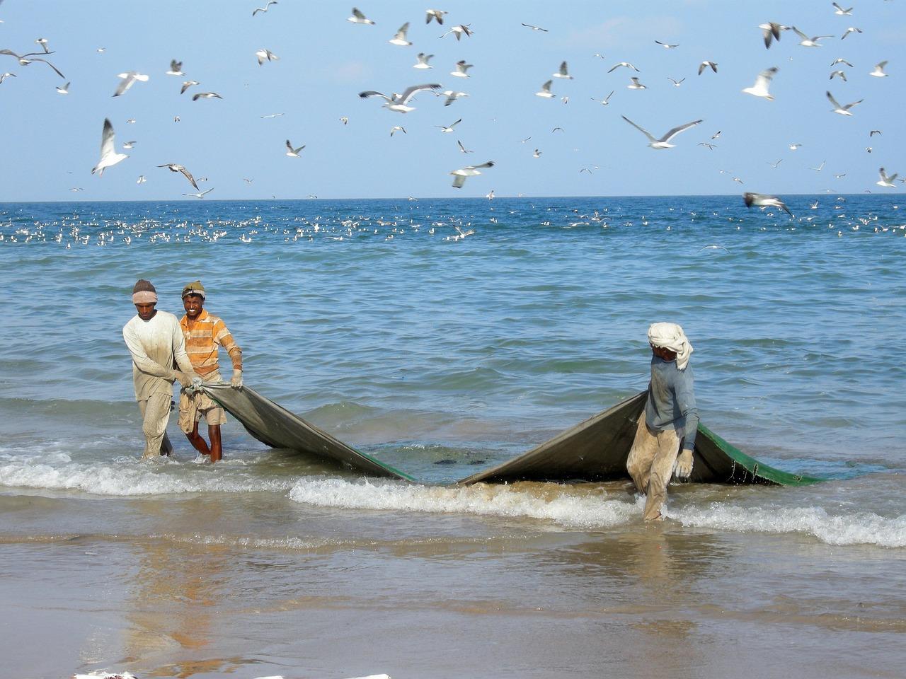 fisherman oman