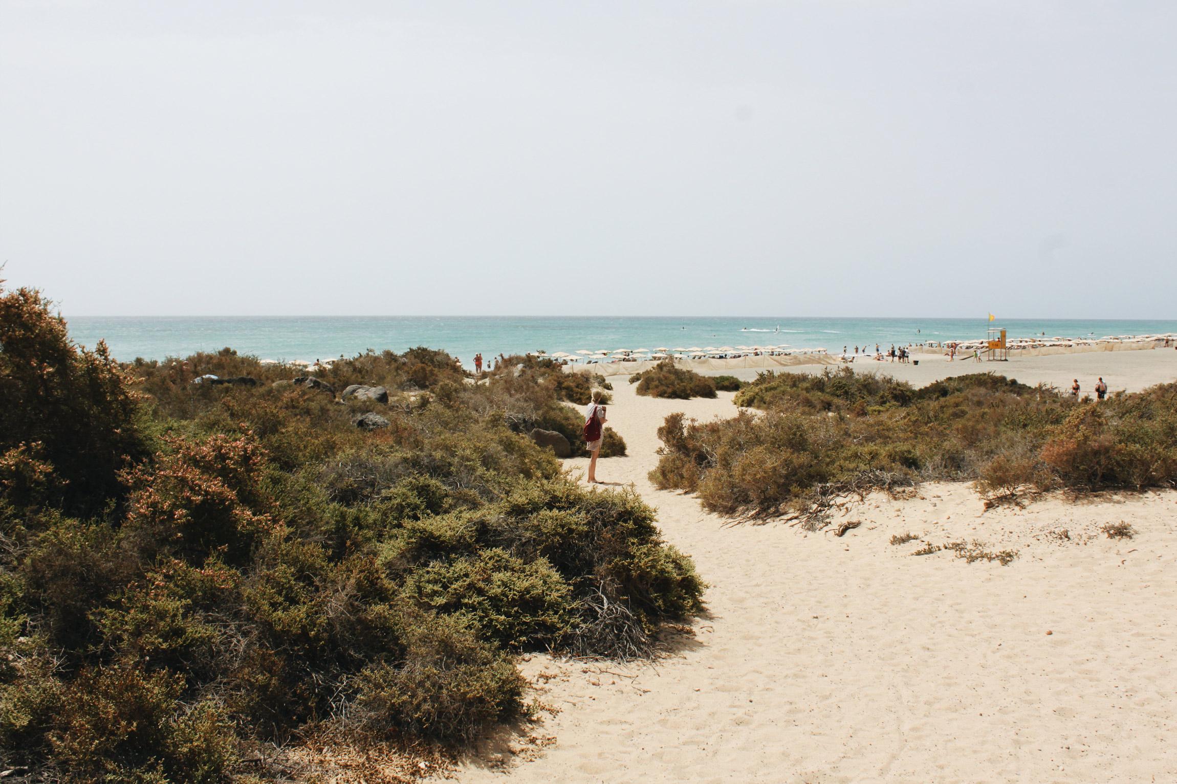 Fuerteventura - Canary islands travel, Spain