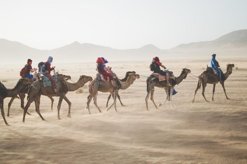 Camel riders, Sahara Desert, sand, travelers